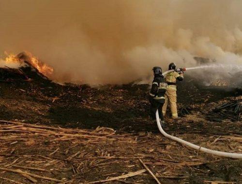 Более 40 спасателей локализовали крупный пожар в Биробиджане