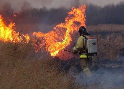 В ЕАО отменили особый противопожарный режим