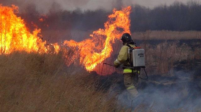 Горим: пожароопасная обстановка в ЕАО остается тяжелой