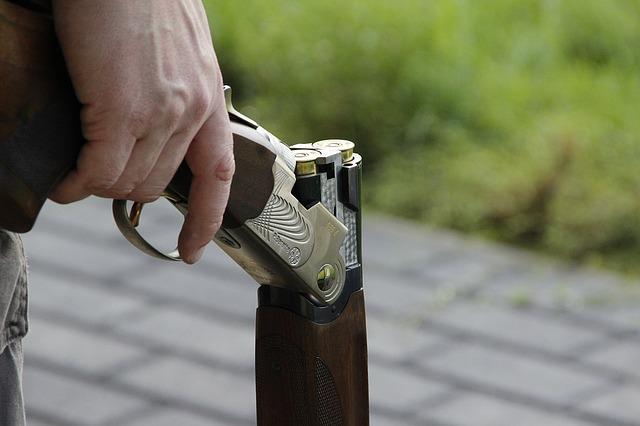 Чрезмерно мягкое наказание назначили жителю ЕАО за убийство из ружья — прокуратура