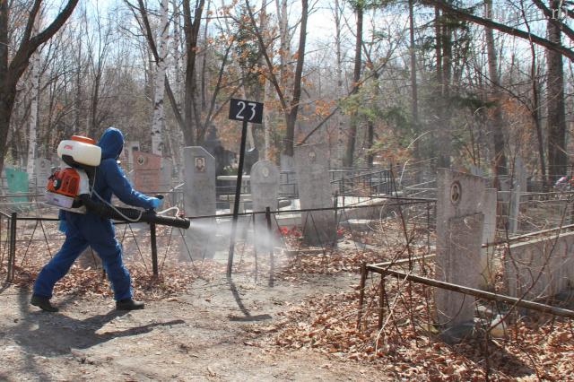 На биробиджанском кладбище проведут противоклещевую обработку