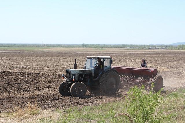 Начать посевную не могут некоторые фермеры в ЕАО