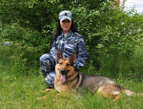 24 собаки несут службу в полиции ЕАО