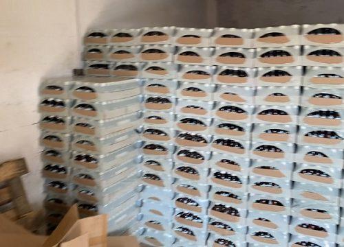 Около 30 тонн спиртосодержащей продукции изъяли в Биробиджане