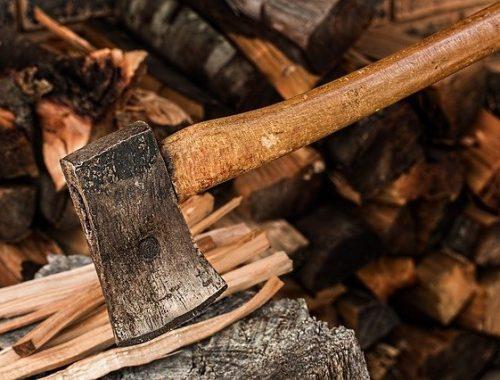 На уголовное дело нарубил деревьев житель ЕАО