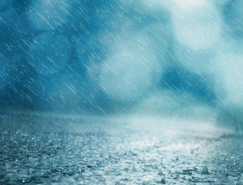 Вот вам и лето: сильные ливни и ветер обрушатся на ЕАО
