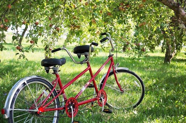 Биробиджанские велосипедисты приглашают всех желающих на субботник