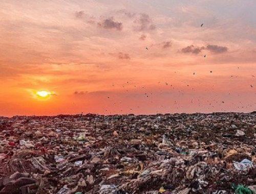 Гребите по волнам «мусорной реформы» к родному Биробиджану!