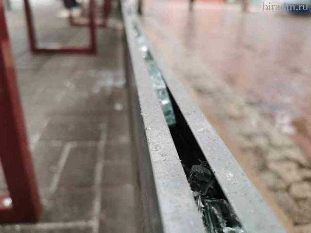 Уголовное дело о вандализме завели на биробиджанца