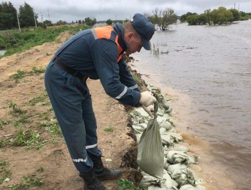 Начало прохождения гребня амурского паводка по ЕАО сместилось с 10 на 11 августа