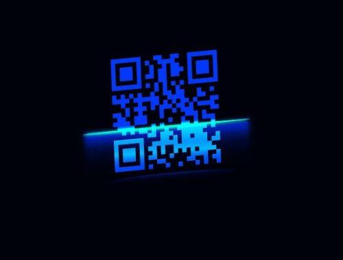 В ЕАО могут ввести QR-коды